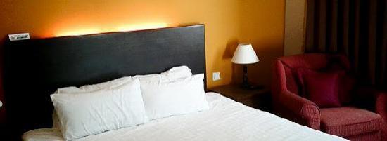 Hotel Eden54: Modern style room