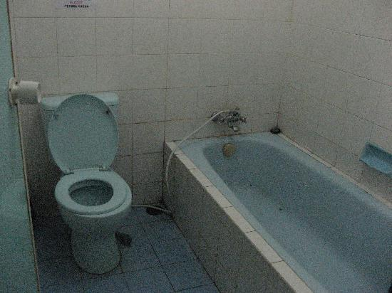 Hotel Segoro: The bathroom, in need of some renovation
