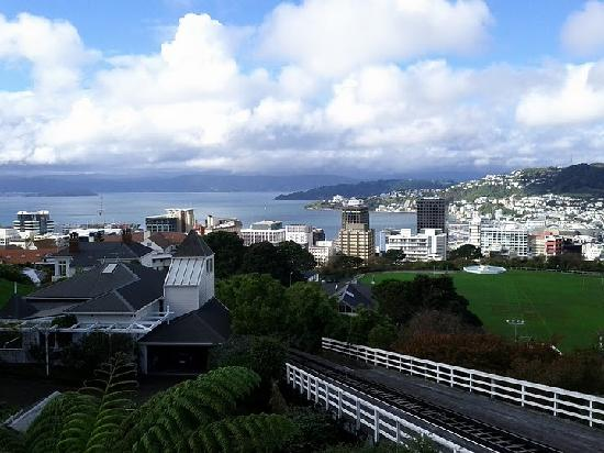 A Great View: Wellington