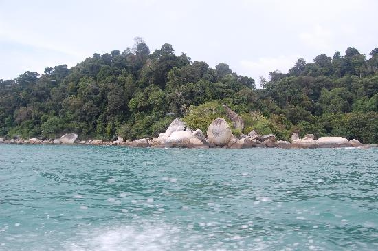 Vikri Beach Resort Pangkor: Snorkeling area