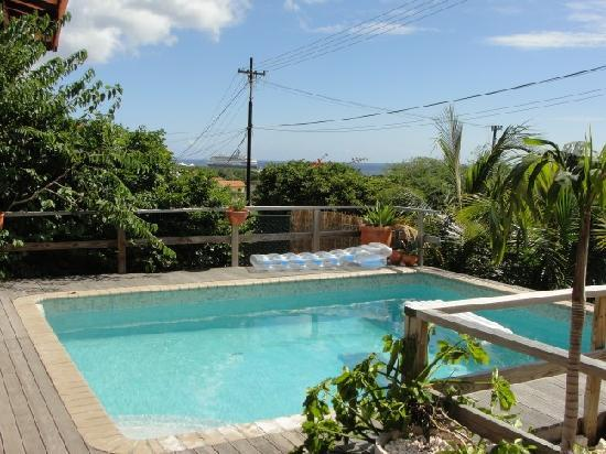 Iguana Villa & Appartementen: The view with private pool