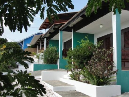 Iguana Villa & Appartementen: The appartments