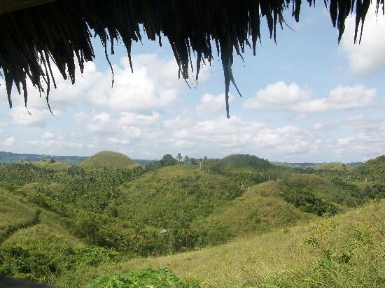Danao Adventure Park : chocolate hills in Danao