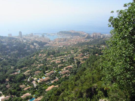 Liven Up Tours: Monaco from Haut Corniche