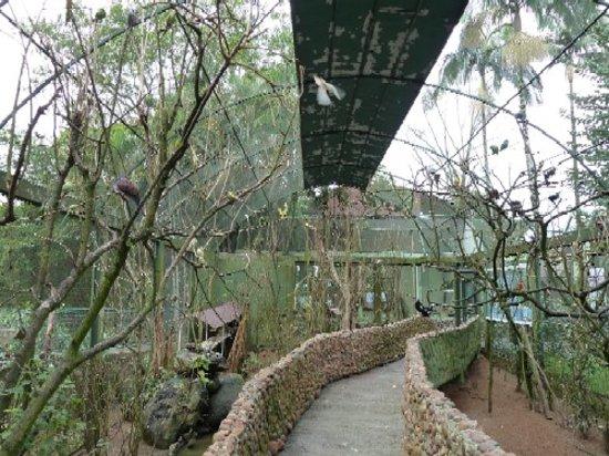 Pomerode, SC: Begehbarer Vogelkäfig