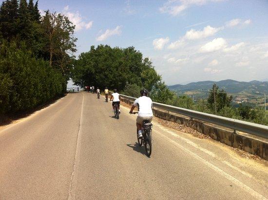 Tuscany Bike Tours: The peliton.