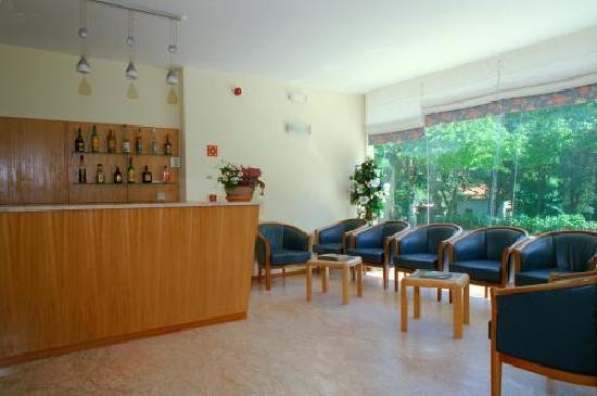 Hotel Caldelas: Bar