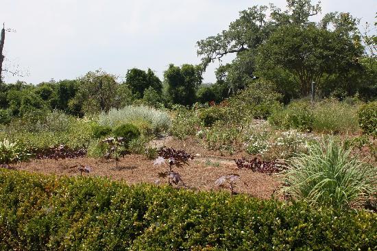 Mount Pleasant, SC: plantage 'tuin'