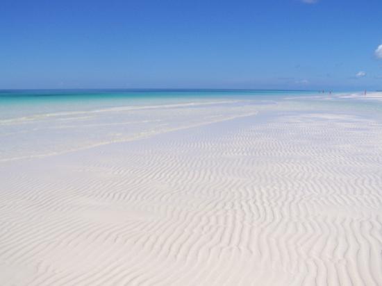 Gold Rock Beach: heaven on earth