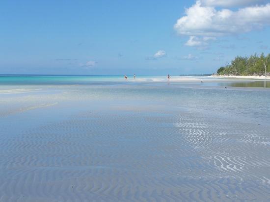 Gold Rock Beach: paradise
