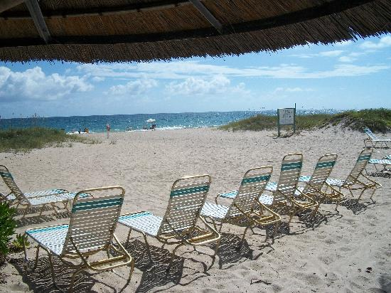 Native Sun Resort: Relax in complimentary beach lounges under tiki umbrellas