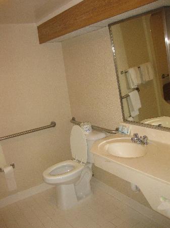 Sleep Inn Nashville: bathroom