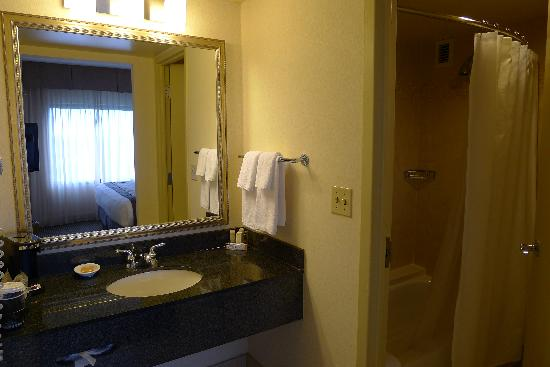 Hyatt Regency Dulles: Bathroom