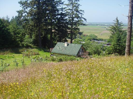 Ye Olde Danish Inn: from the hill,over looking the our cabin