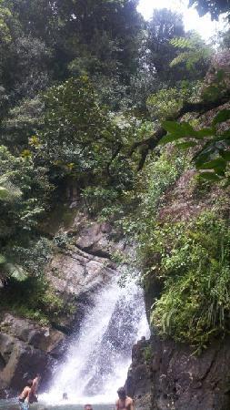 Hotel Yunque Mar: La Mina Falls in El Yunque
