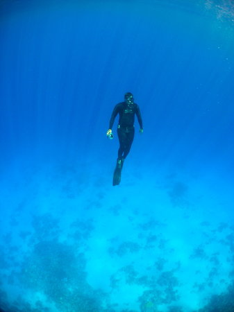 Blue Ocean Free Divers - Day Course : perfect conditions