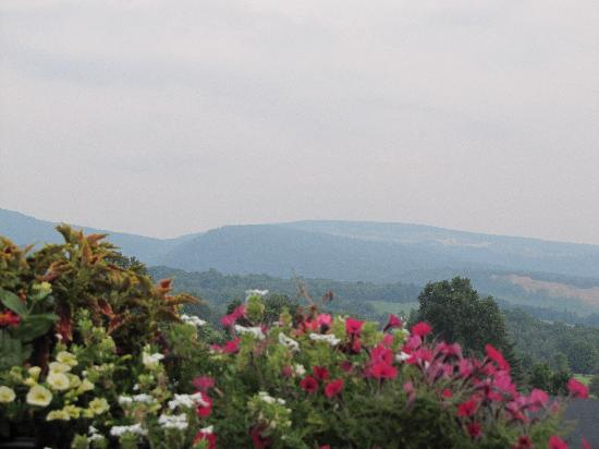 Hampton Inn & Suites Blairsville: View from the golf course restaurant