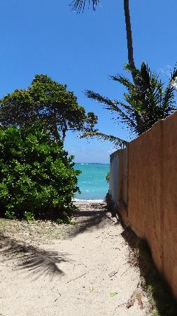 Lanikai Beach: 小道