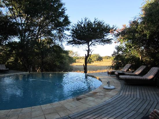 andBeyond Phinda Forest Lodge: Pool