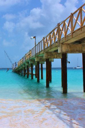 The Boatyard: the pier from below