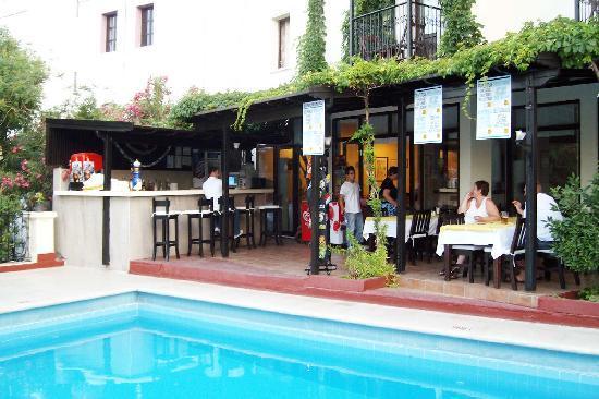 Paloma Hotel: Bar