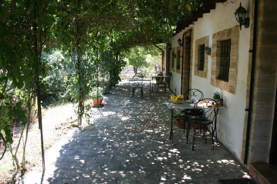 Villa Mimosa : View along the rear