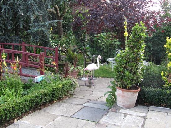 Babylon : one of the Flamingos