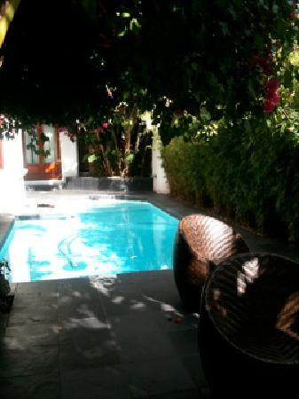 Dunkley House : pool sight