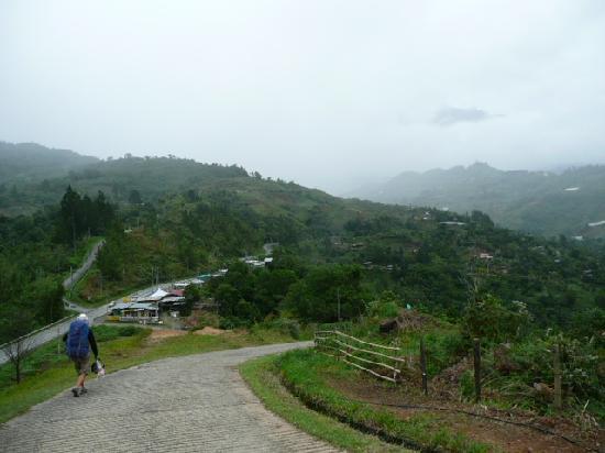 Ranau, Malaysia: Main views & driveway