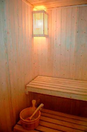 Hotel Asset Torrejon: Sauna