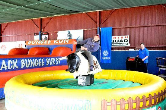 Quadventure : Our Rodeo Bull
