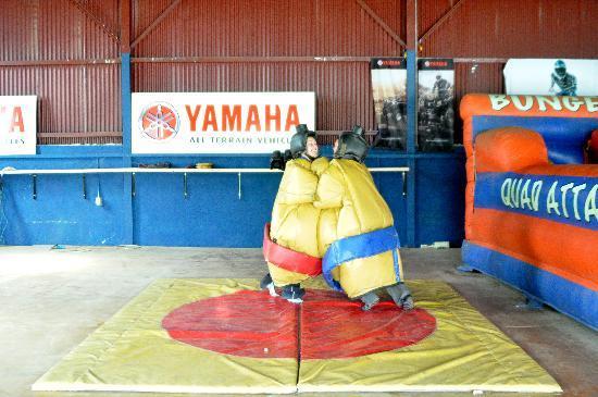 Quad Attack : Wrestling in Sumo Suits