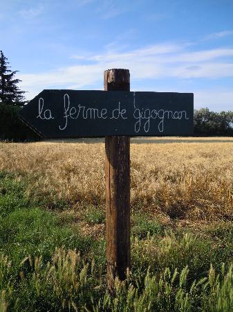 La Ferme de Gigognan: I loved the little