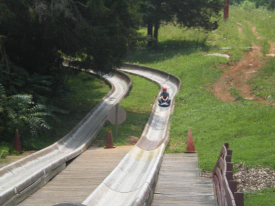 Kentucky Action Park: alpine slide