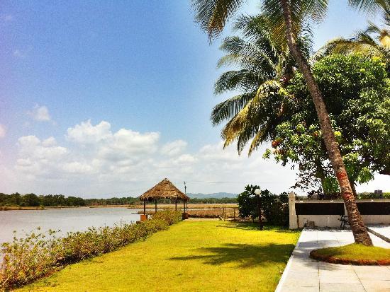 Devaaya Ayurveda & Nature cure Centre: View of Mandovi River