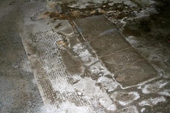 Palazzo Farrattini: 1st-2nd century Roman mosaic floor in the basement