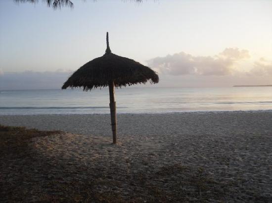 Kipepeo Beach Village: The beach