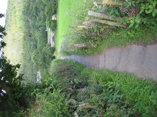 Maes Y Fedwen : The footpath to town