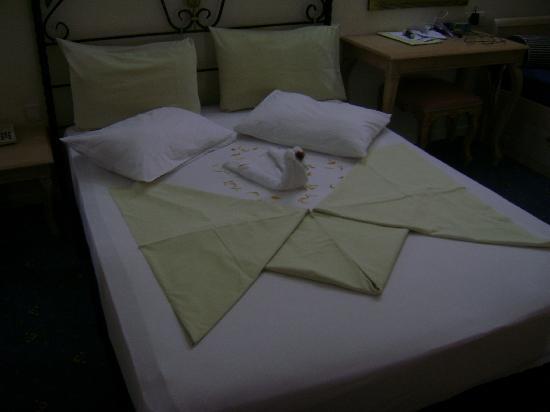Pasha's Princess Hotel: swan  1