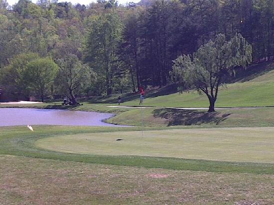 Rumbling Bald Resort on Lake Lure: Bald Mountain Course #4 Green