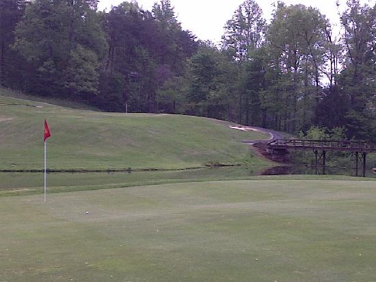 Rumbling Bald Resort on Lake Lure: Apple Valley Course #11 Green