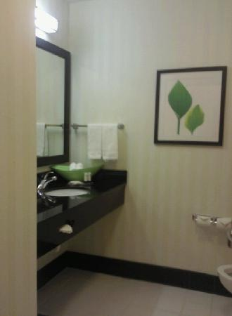 Fairfield Inn & Suites Tampa North: bathroom