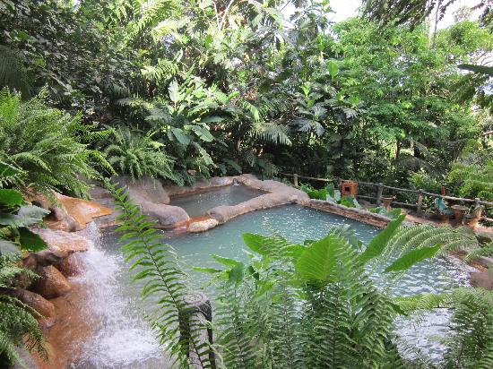 The Springs Resort and Spa: hot springs in the forest