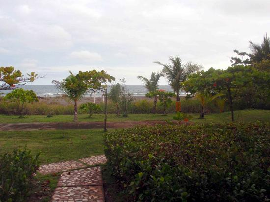 Hotel Las Olas Beach Resort: Ocean from the room 103