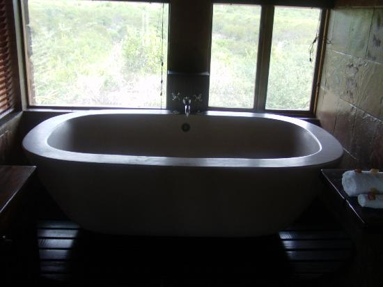 Mokolodi House: Bathroom in Suite