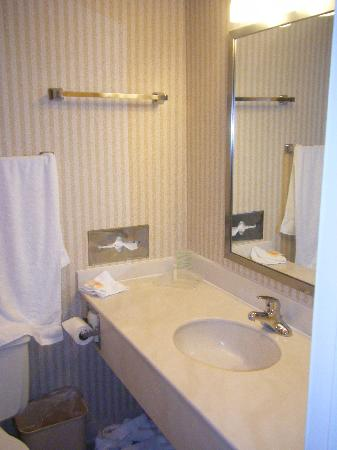 Holiday Inn Buffalo Downtown: Small Bathroom