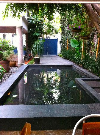 Hotel Villa Condesa Updated 2018 Prices Reviews Mexico City Tripadvisor