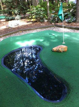 Legendary Golf: Real water hazard - green thinning a bit.