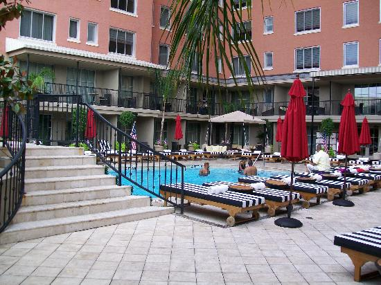 Hotel Zaza Houston Museum District The Pool At