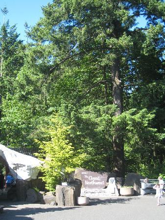 Oregon Zoo: The Great Northwest area of the zoo